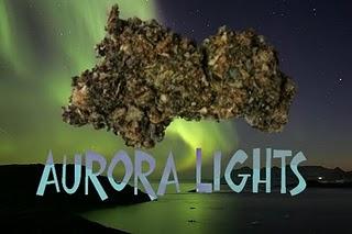 Aurora+Lights_legal+bud.jpg